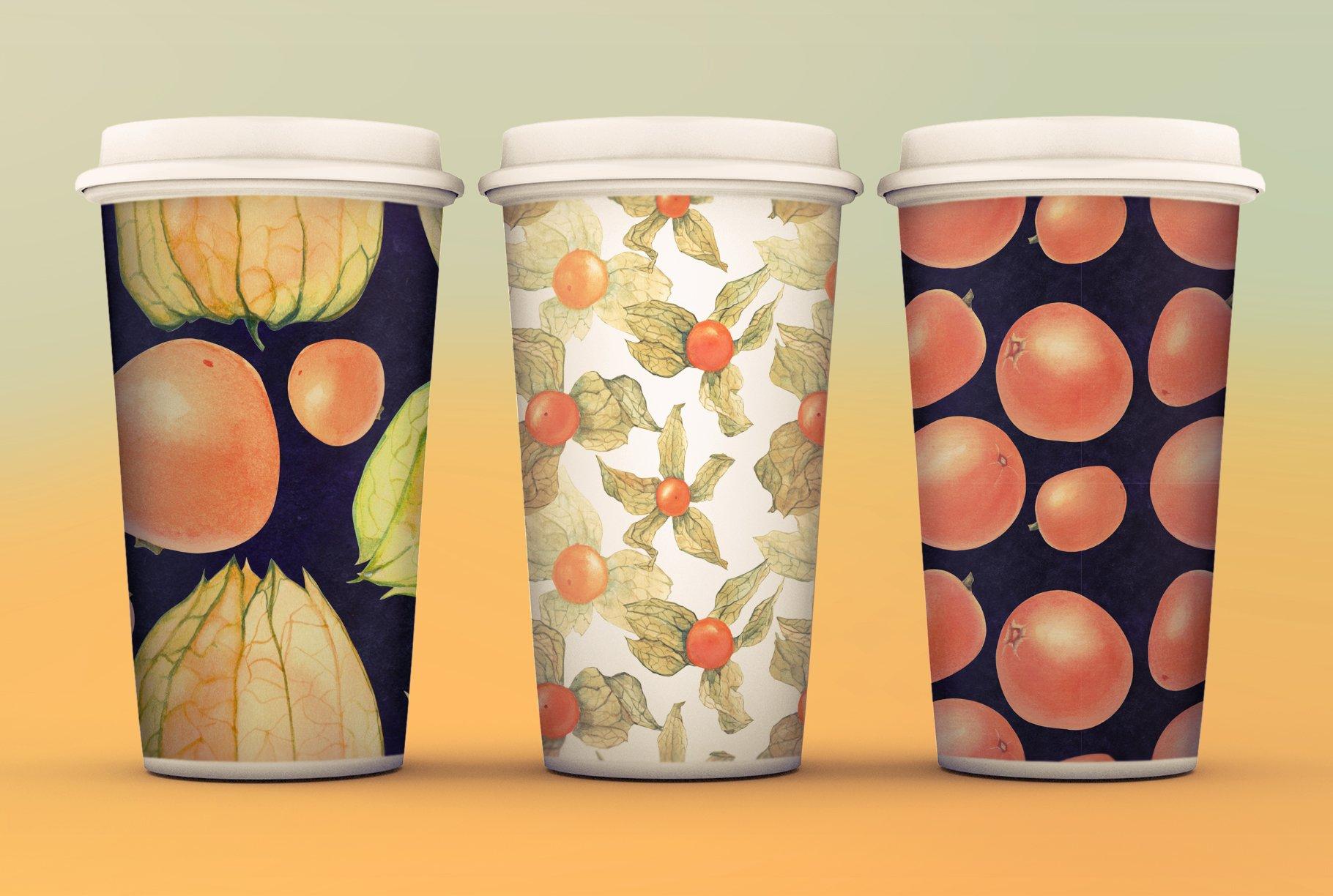 现代水彩水果装饰图案插图PNG透明图片素材 Physalis Botanical Watercolor插图(6)
