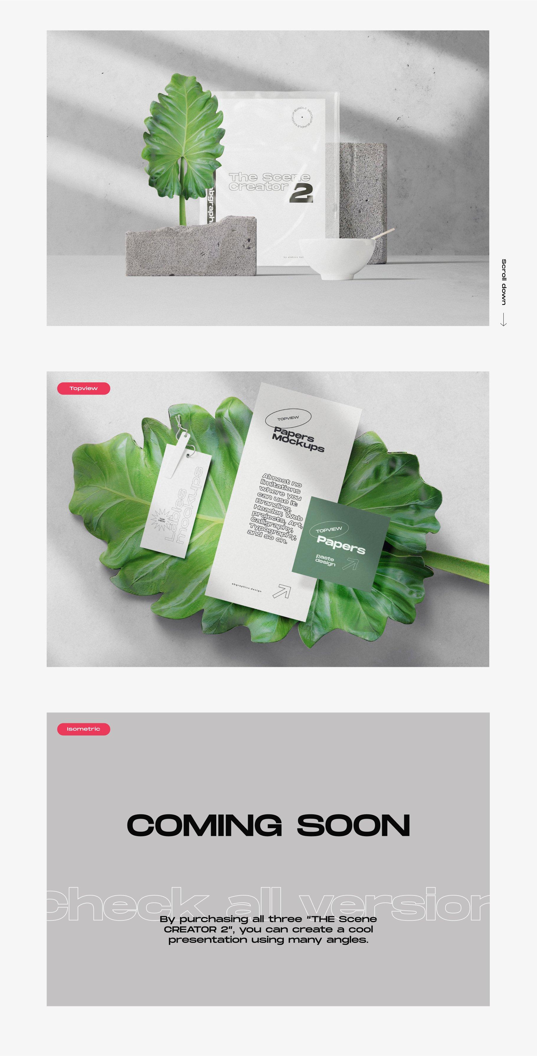 [淘宝购买] 超大品牌VI包装设计PS智能贴图样机模板素材 The Scene Creator 2 / Frontview插图(8)