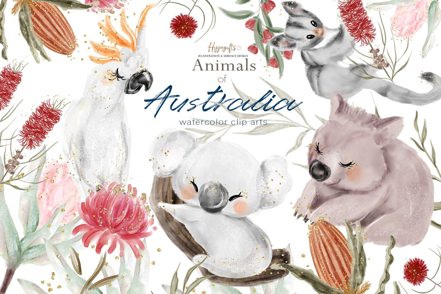 澳大利亚动物水彩画PNG免抠透明图片素材 Australia Animals Illustration插图