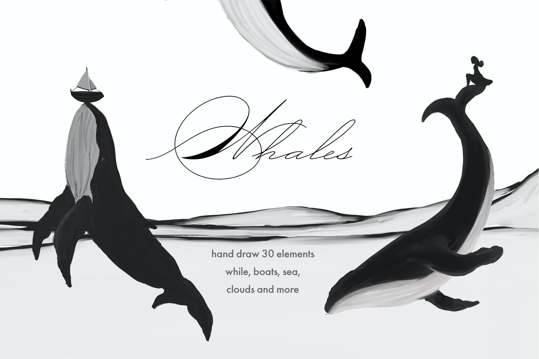 30款精美高清手绘鲸鱼轮船山脉图片素材 Whales – Black And White Prints插图