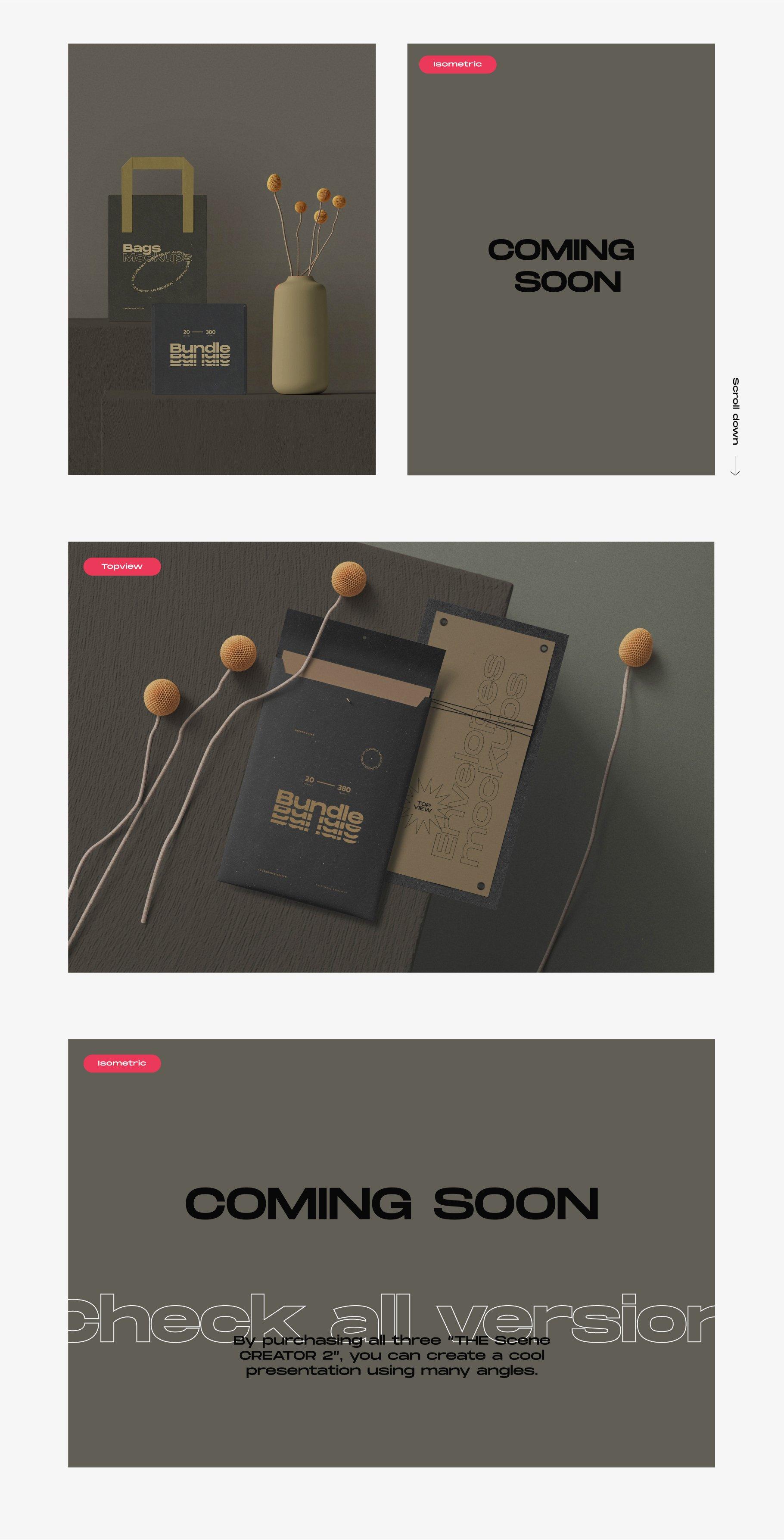 [淘宝购买] 超大品牌VI包装设计PS智能贴图样机模板素材 The Scene Creator 2 / Frontview插图(13)