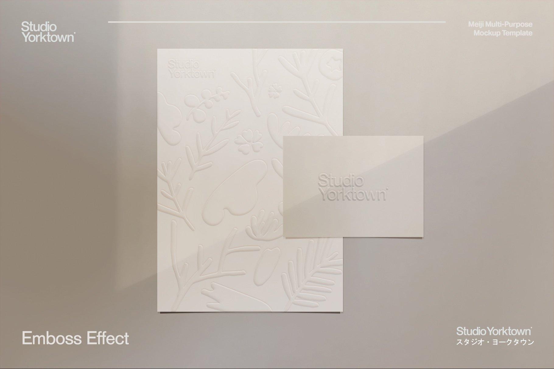 [淘宝购买] 潮流多功能压印铝箔虹彩效果办公用品场景样机套件 Meiji Multi Effect Mockup Template插图(17)