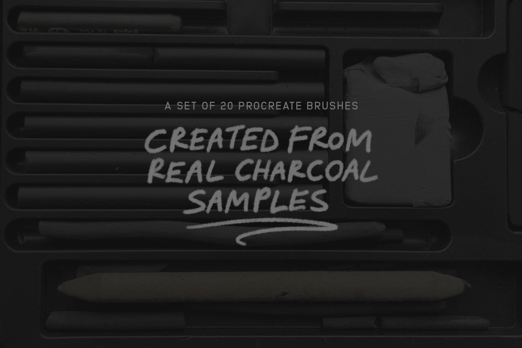20款木炭铅笔素描绘画画笔Procreate笔刷 Charcoal Procreate Brushes插图(2)