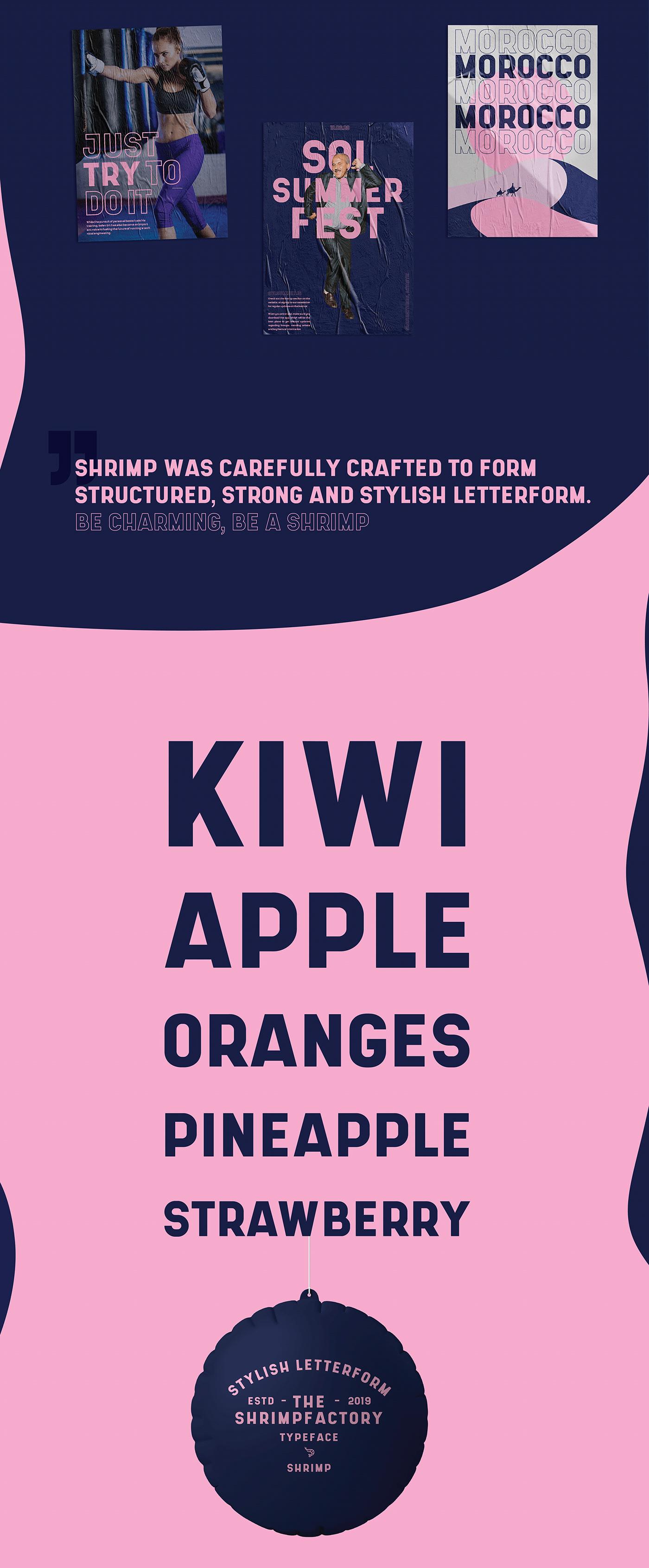 时尚坚固海报设计无衬线英文字体下载 Shrimp Sans Serif Font插图(2)