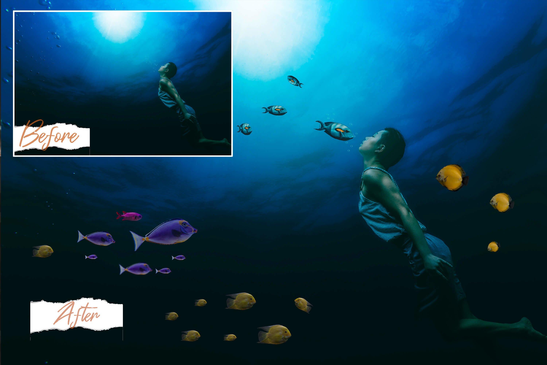 40款高清海洋鱼PS叠加图片素材 40 Sea Fish Overlays插图(1)