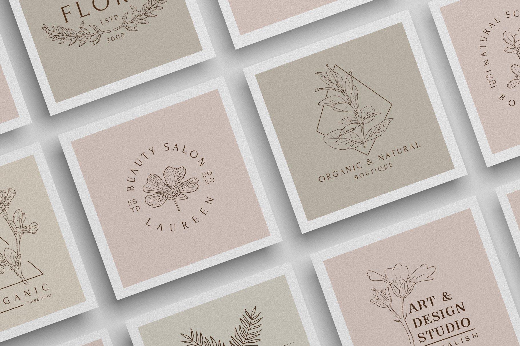 精美植物徽标标志设计AI矢量模板素材 BotanicalLogos & Illustrations插图(2)