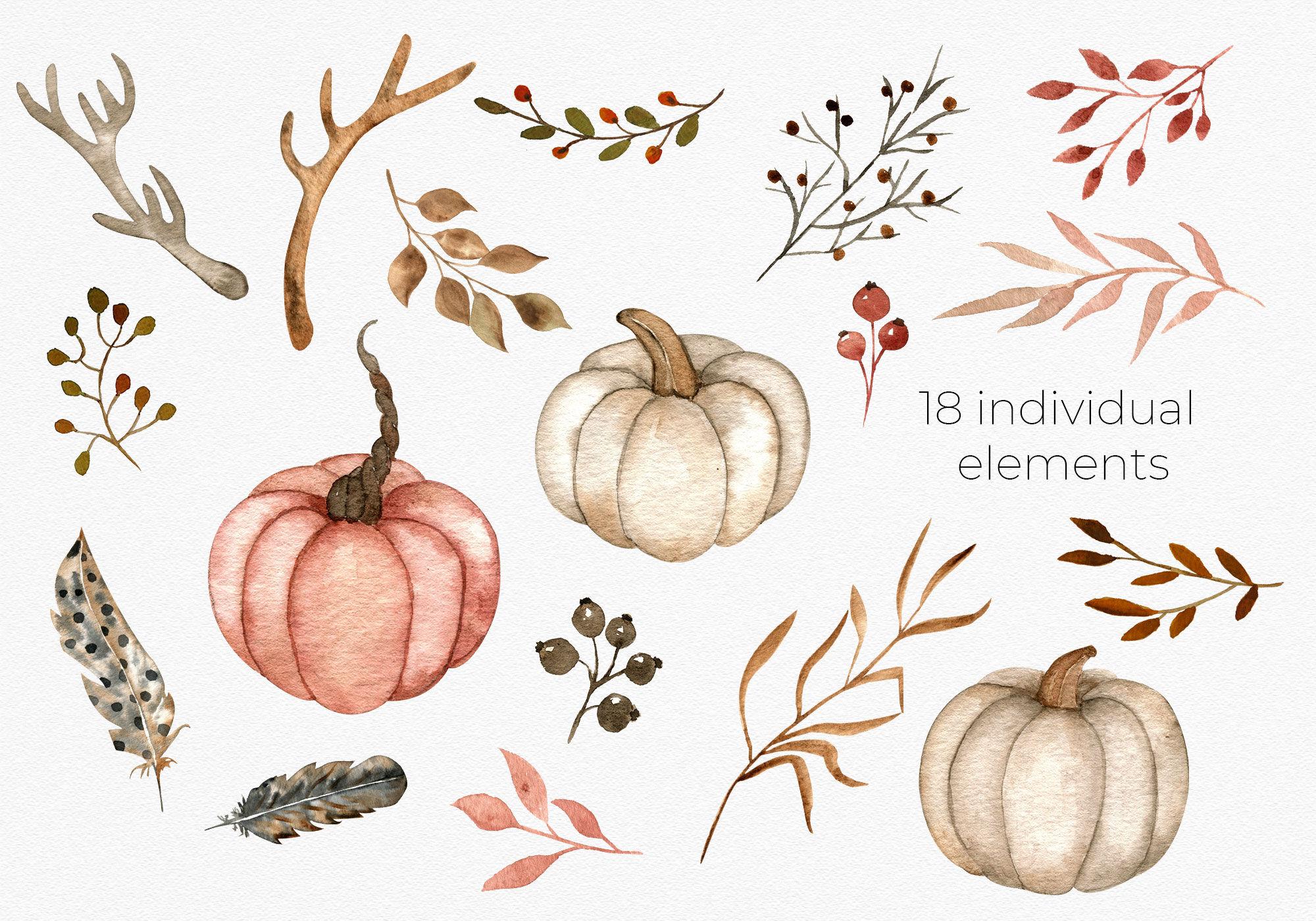 中性色调乡村秋季元素水彩剪贴画素材 Watercolor Pumpkins, Antlers, Feathers插图(2)