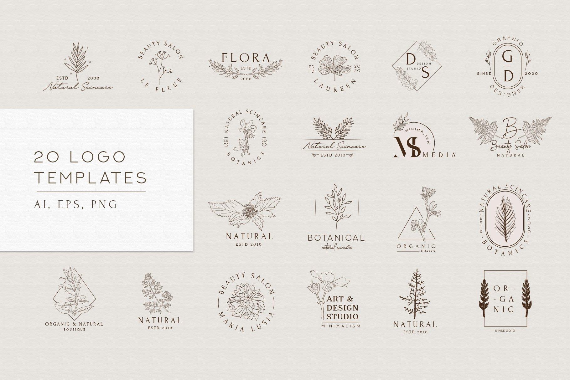 精美植物徽标标志设计AI矢量模板素材 BotanicalLogos & Illustrations插图(3)