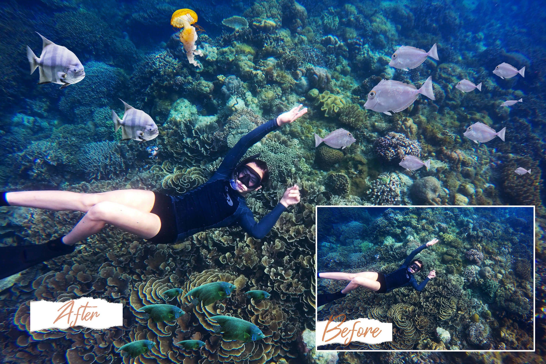40款高清海洋鱼PS叠加图片素材 40 Sea Fish Overlays插图(4)