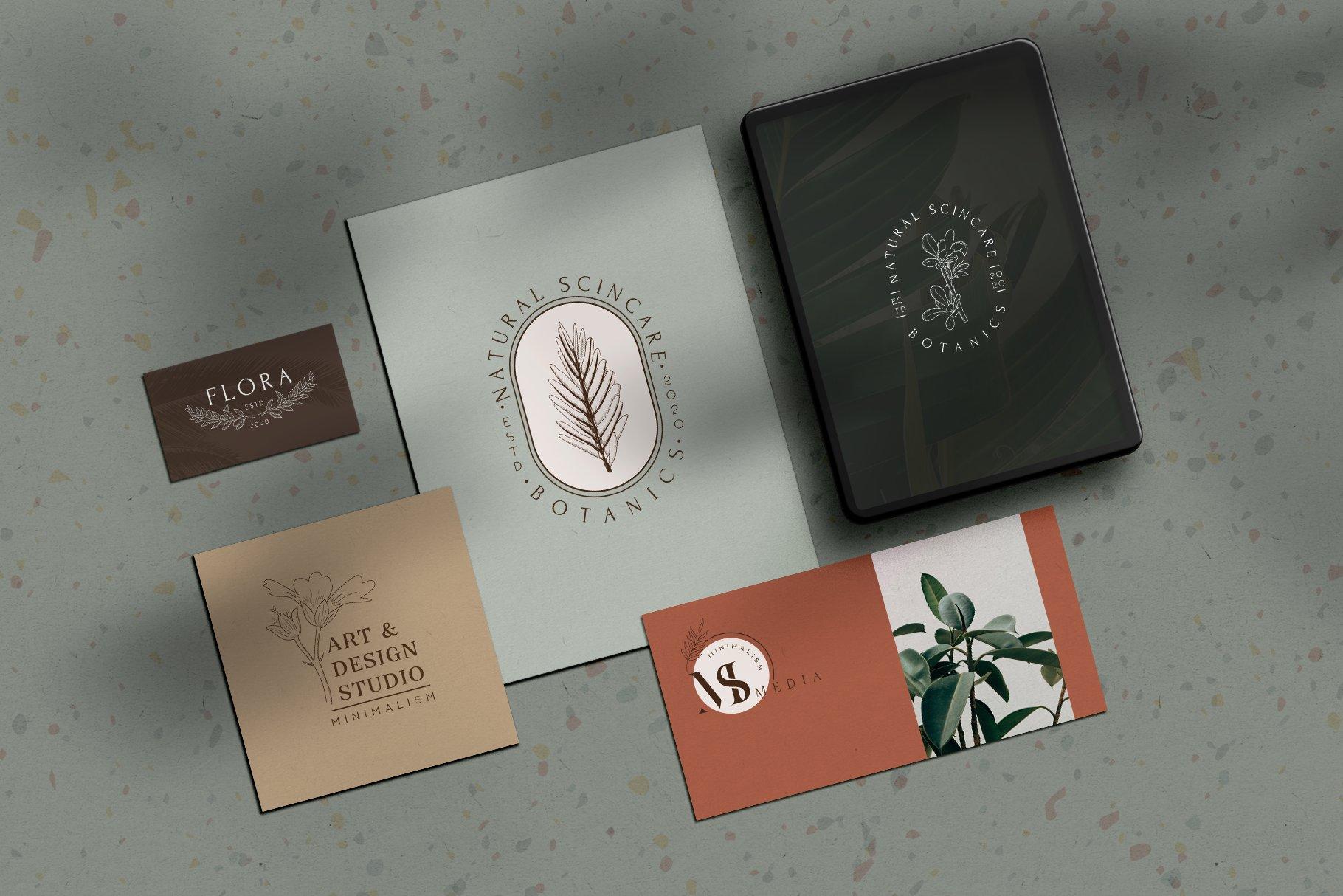 精美植物徽标标志设计AI矢量模板素材 BotanicalLogos & Illustrations插图(4)