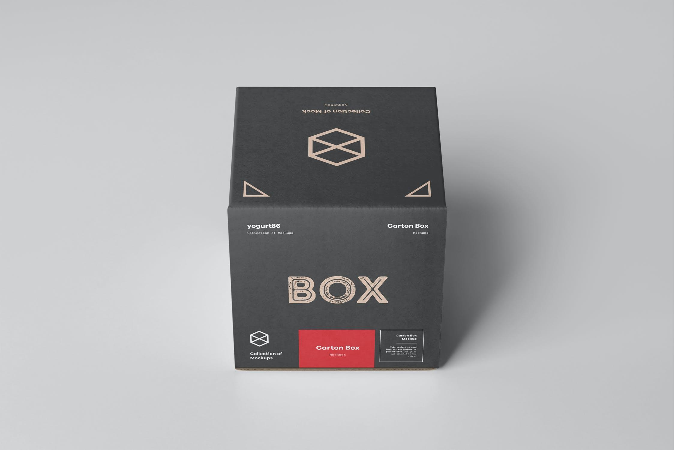 方形产品快递包装纸箱设计展示样机模板 Carton Box Mockup 100x100x100插图(5)