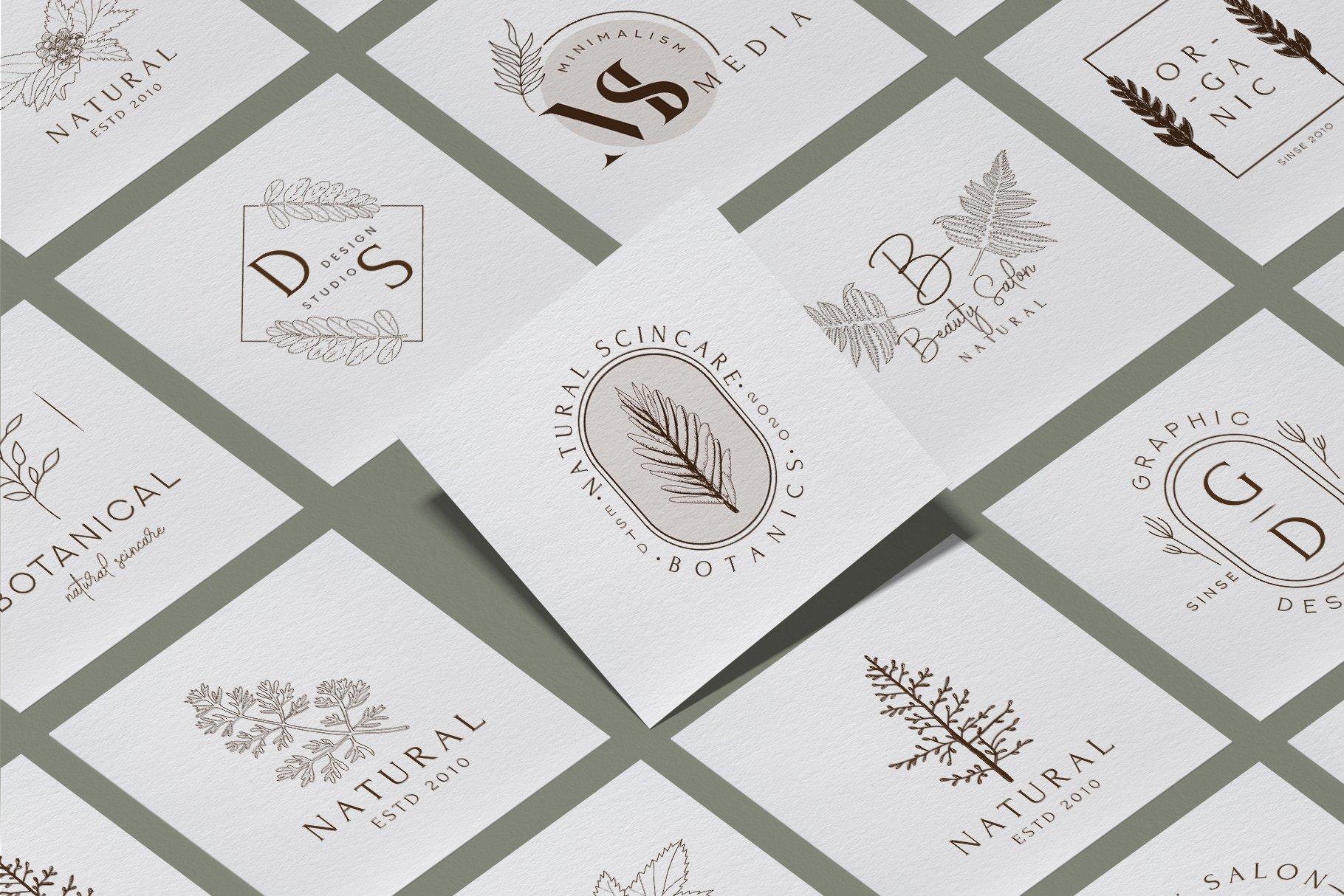精美植物徽标标志设计AI矢量模板素材 BotanicalLogos & Illustrations插图(5)