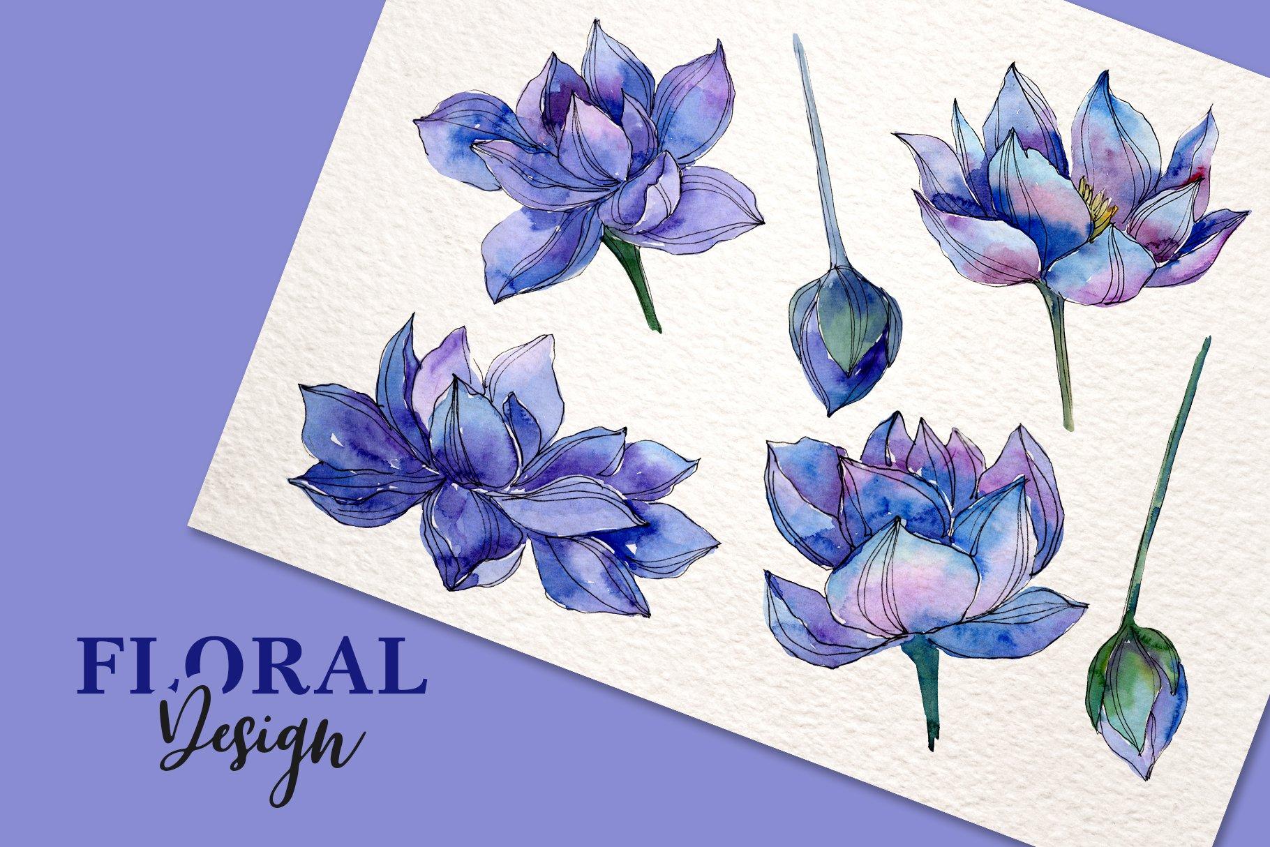 18个高清手绘莲花水彩画PNG免抠图片素材 Watercolor Lotus Set插图(6)