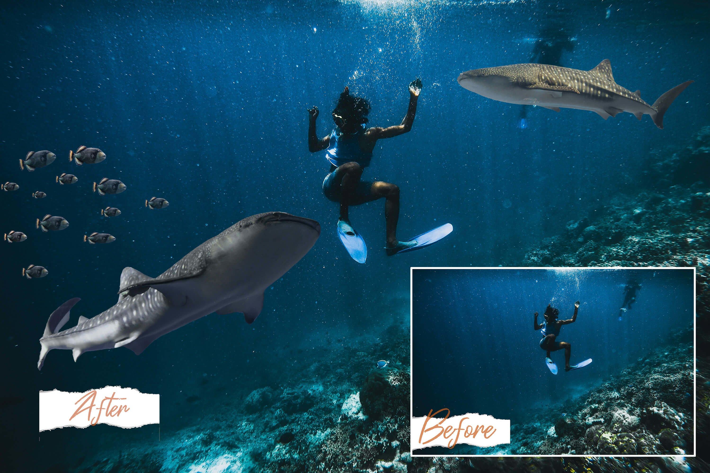 40款高清海洋鱼PS叠加图片素材 40 Sea Fish Overlays插图(7)