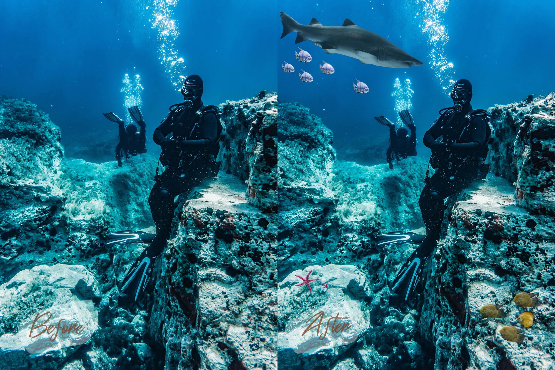 40款高清海洋鱼PS叠加图片素材 40 Sea Fish Overlays插图(8)