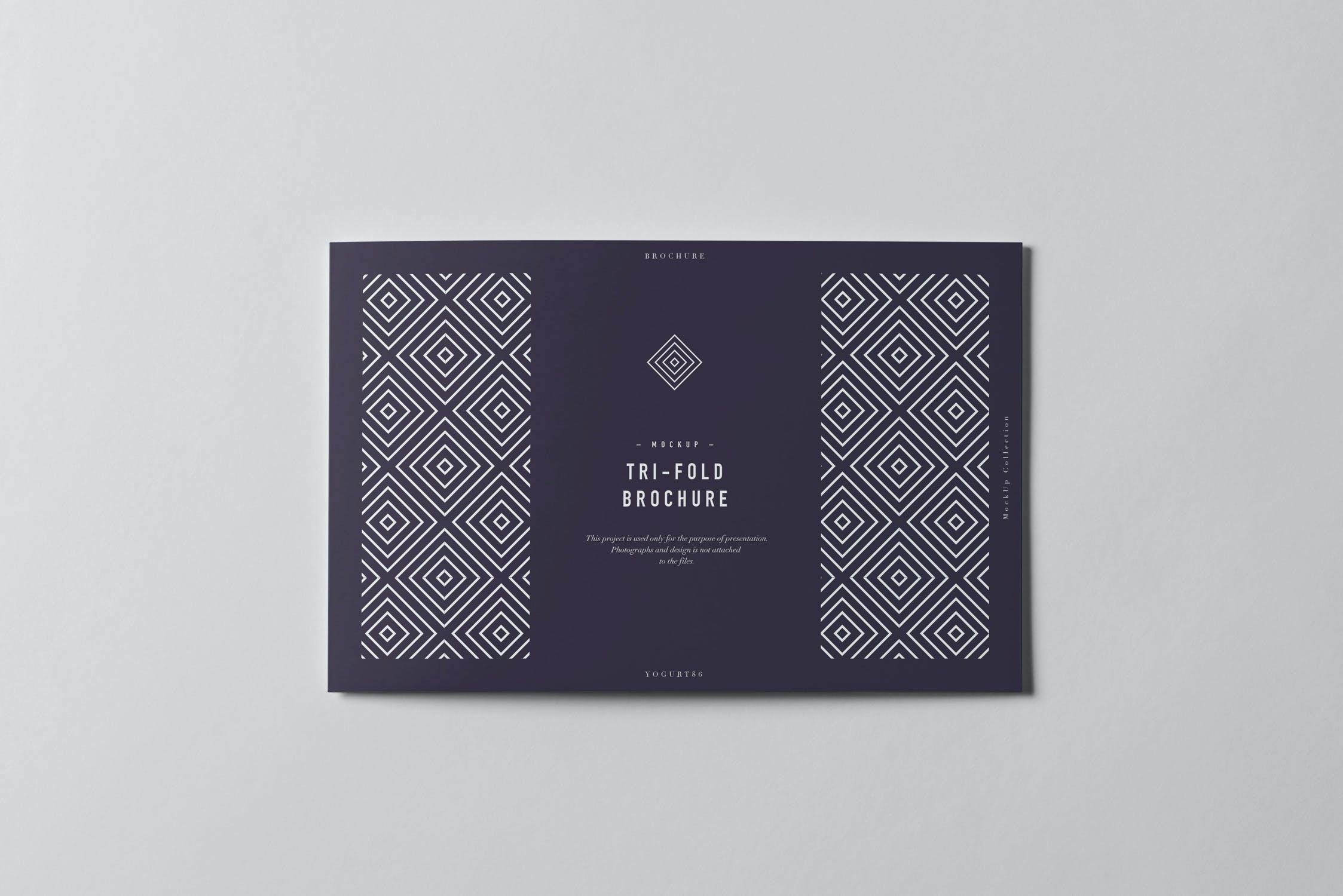 9款横版三折页小册子设计展示样机模板 Tri-Fold Half Letter Horizontal Brochure Mockup插图(8)
