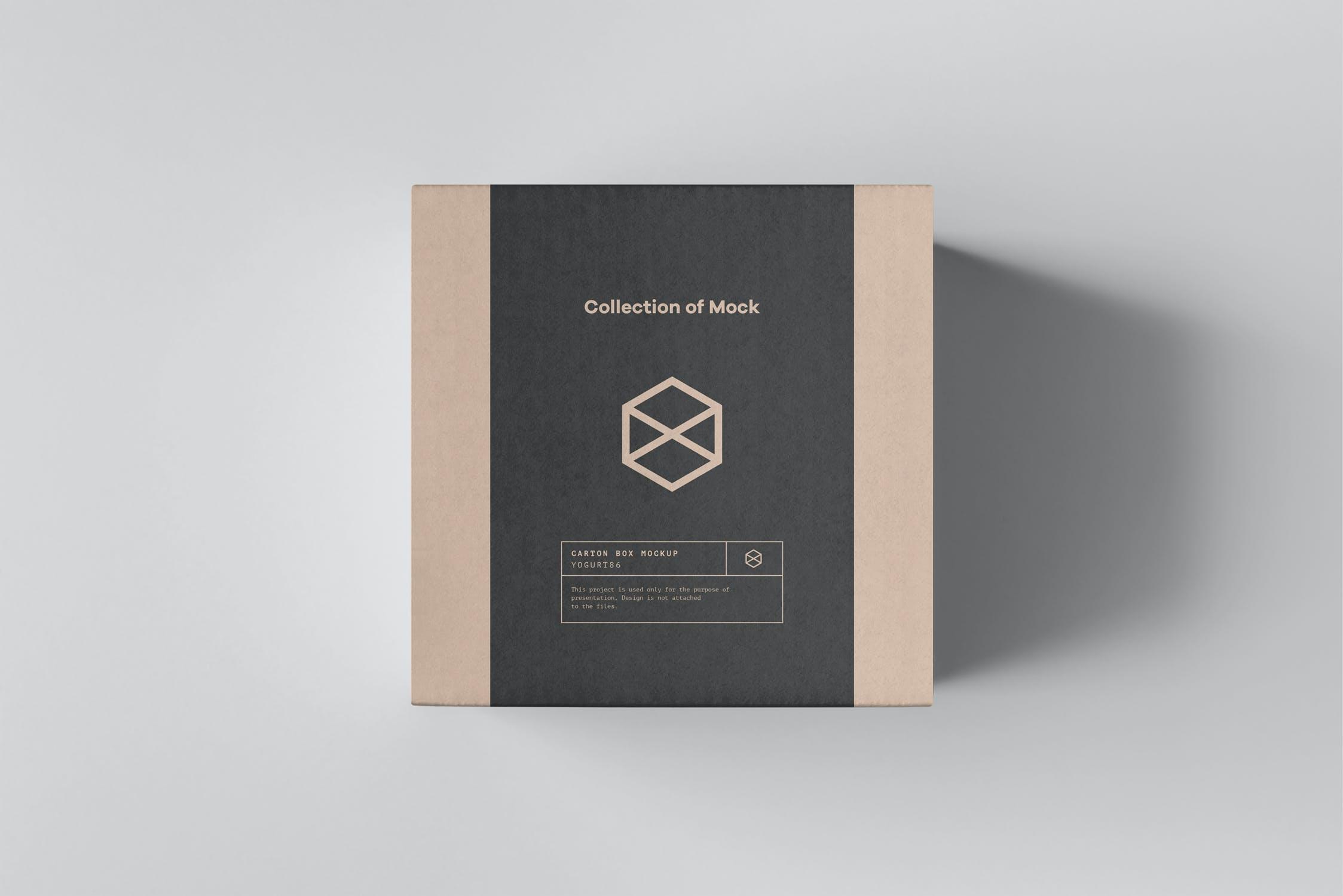方形产品快递包装纸箱设计展示样机模板 Carton Box Mockup 100x100x100插图(8)