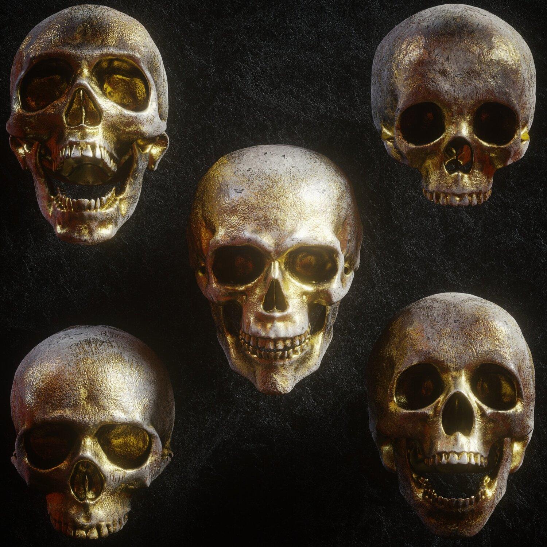 逼真3D人类头盖骨模型PNG免抠图片素材 Billelis 3D Skull Model Pack VOL1插图(1)