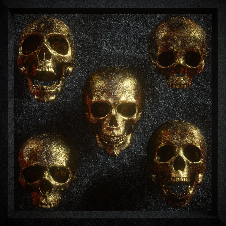 逼真3D人类头盖骨模型PNG免抠图片素材 Billelis 3D Skull Model Pack VOL1插图