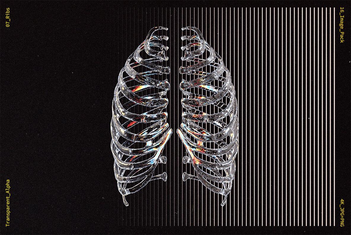 [淘宝购买] 10款高清潮流炫酷3D透明玻璃水晶材质人体骨骼平面广告设计图片素材 Glass Bones Pack插图(7)