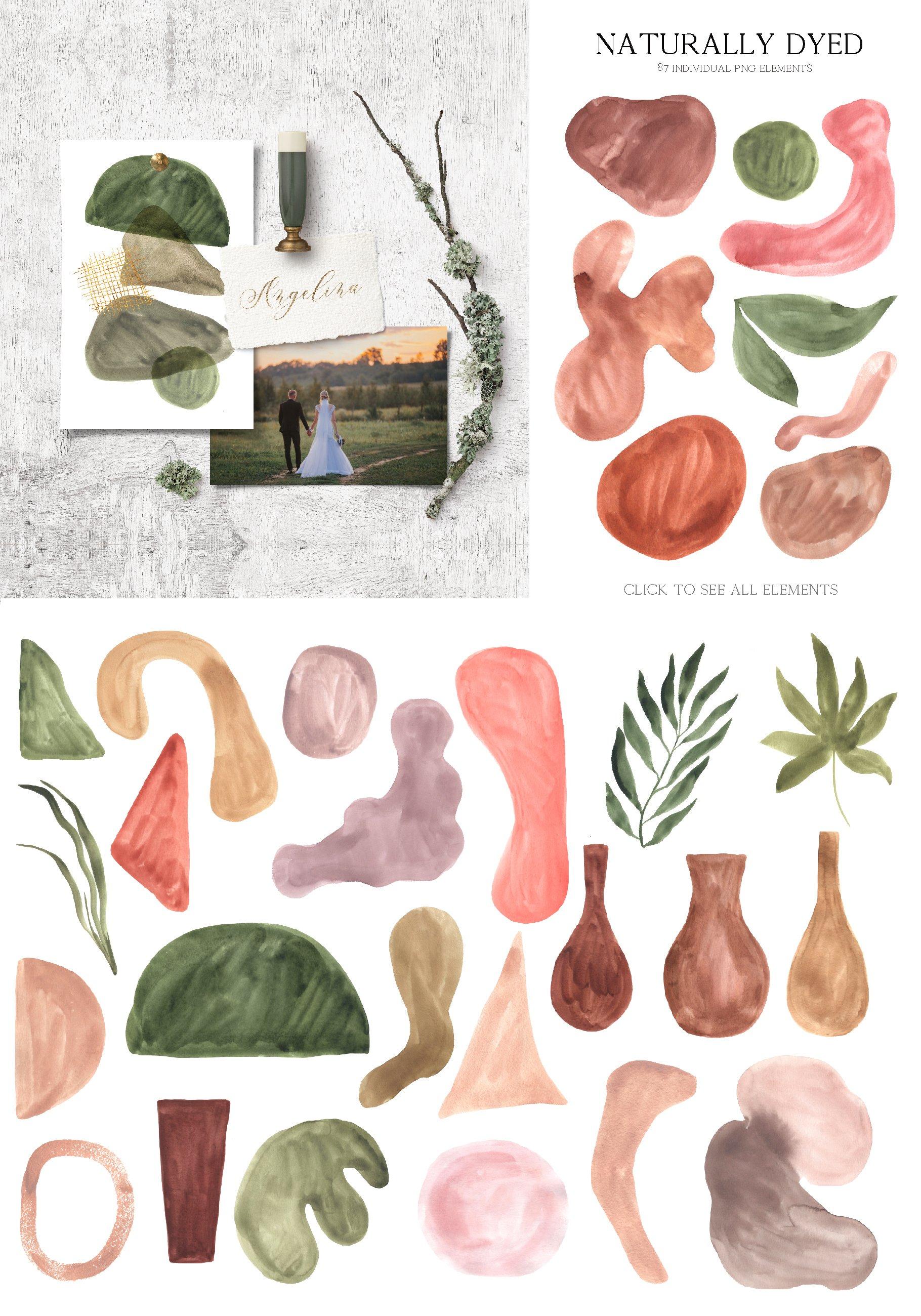 现代抽象水彩手绘植物花卉图案插画PNG免扣图片素材 Abstract Modern Watercolor Bundle插图(2)