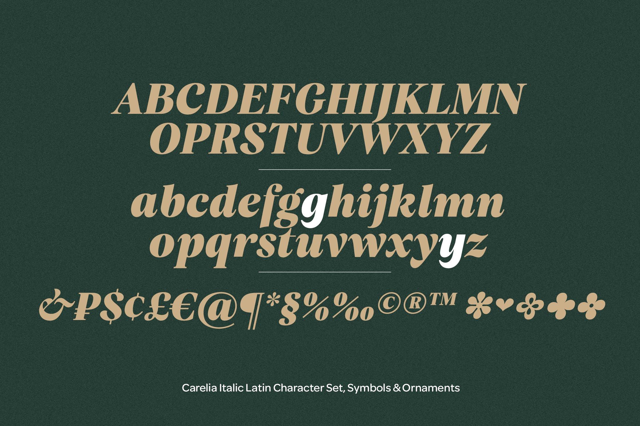 柔性曲线衬线英文字体下载 Carelia Font Family插图(10)
