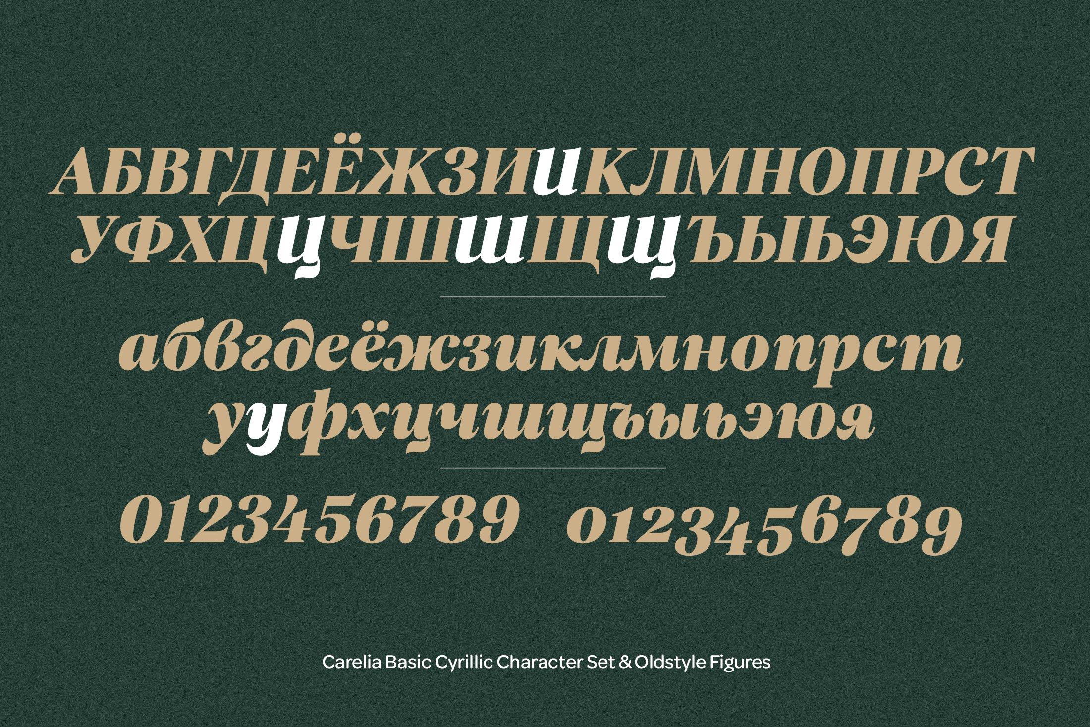 柔性曲线衬线英文字体下载 Carelia Font Family插图(11)