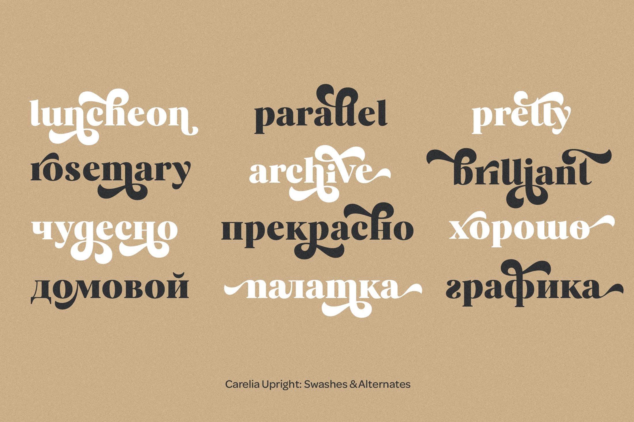 柔性曲线衬线英文字体下载 Carelia Font Family插图(13)