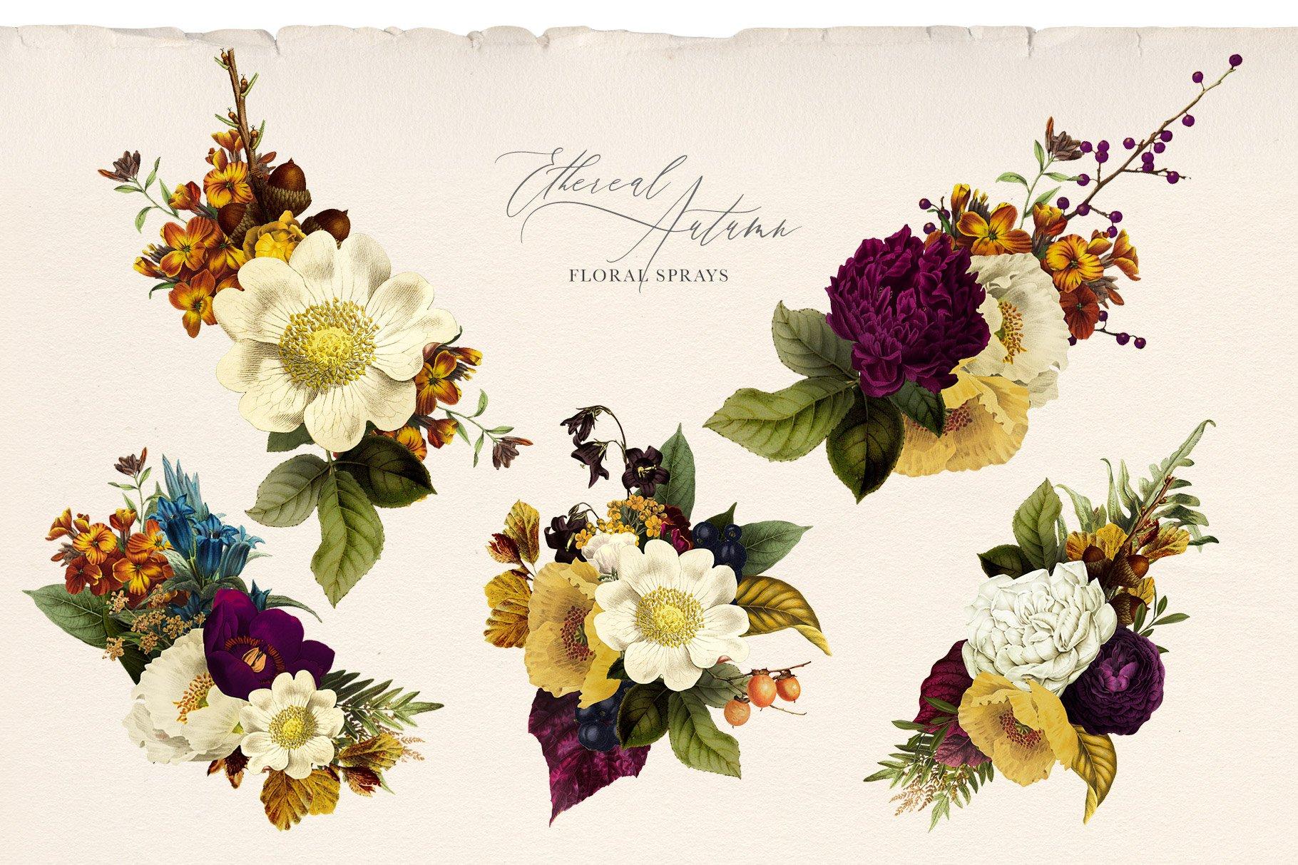 35款高清复古植物花卉平面广告背景设计PNG免抠图片素材 Ethereal Autumn Floral Bouquets插图(7)