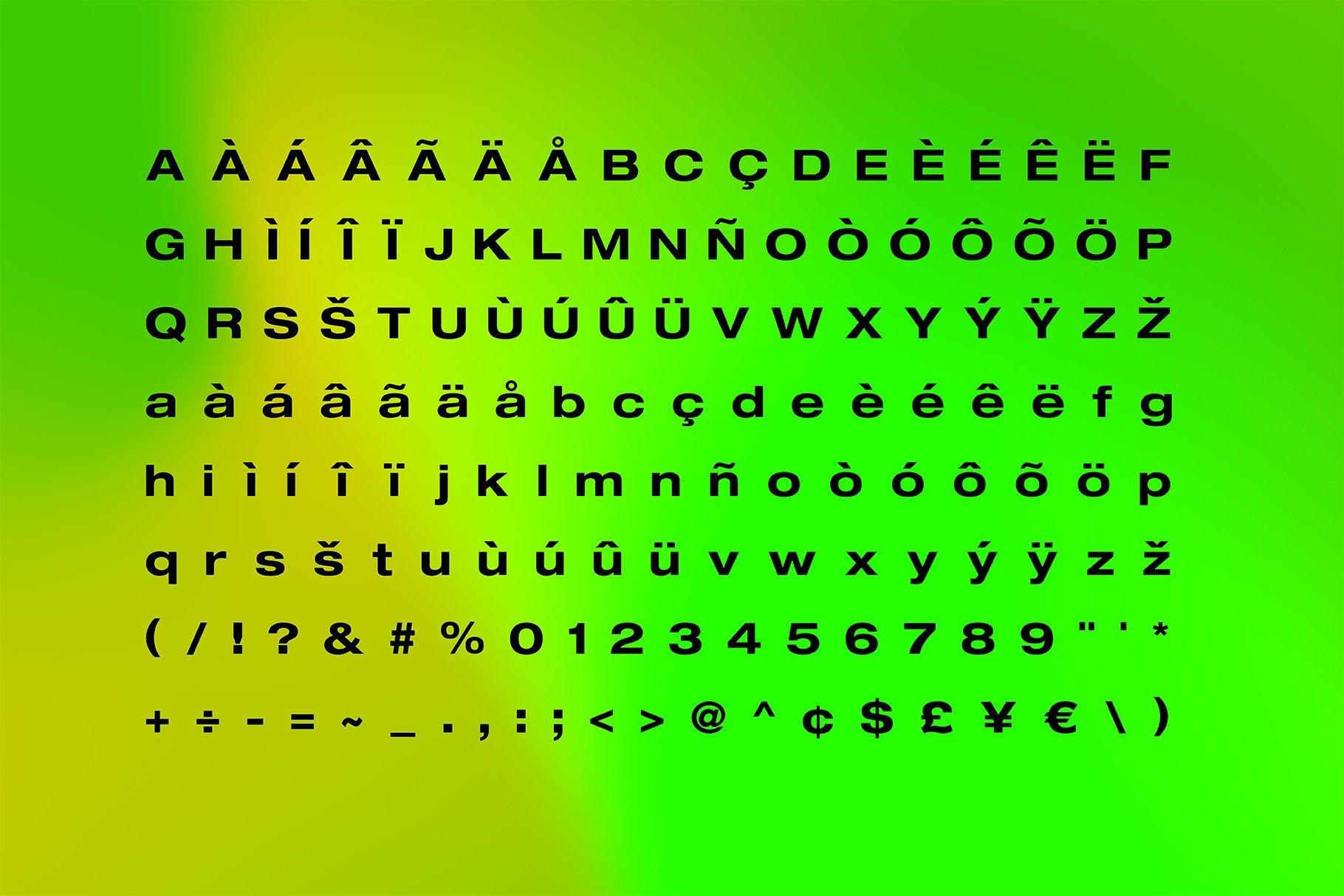 现代简约无衬线英文字体下载 FLURO Typeface插图(4)