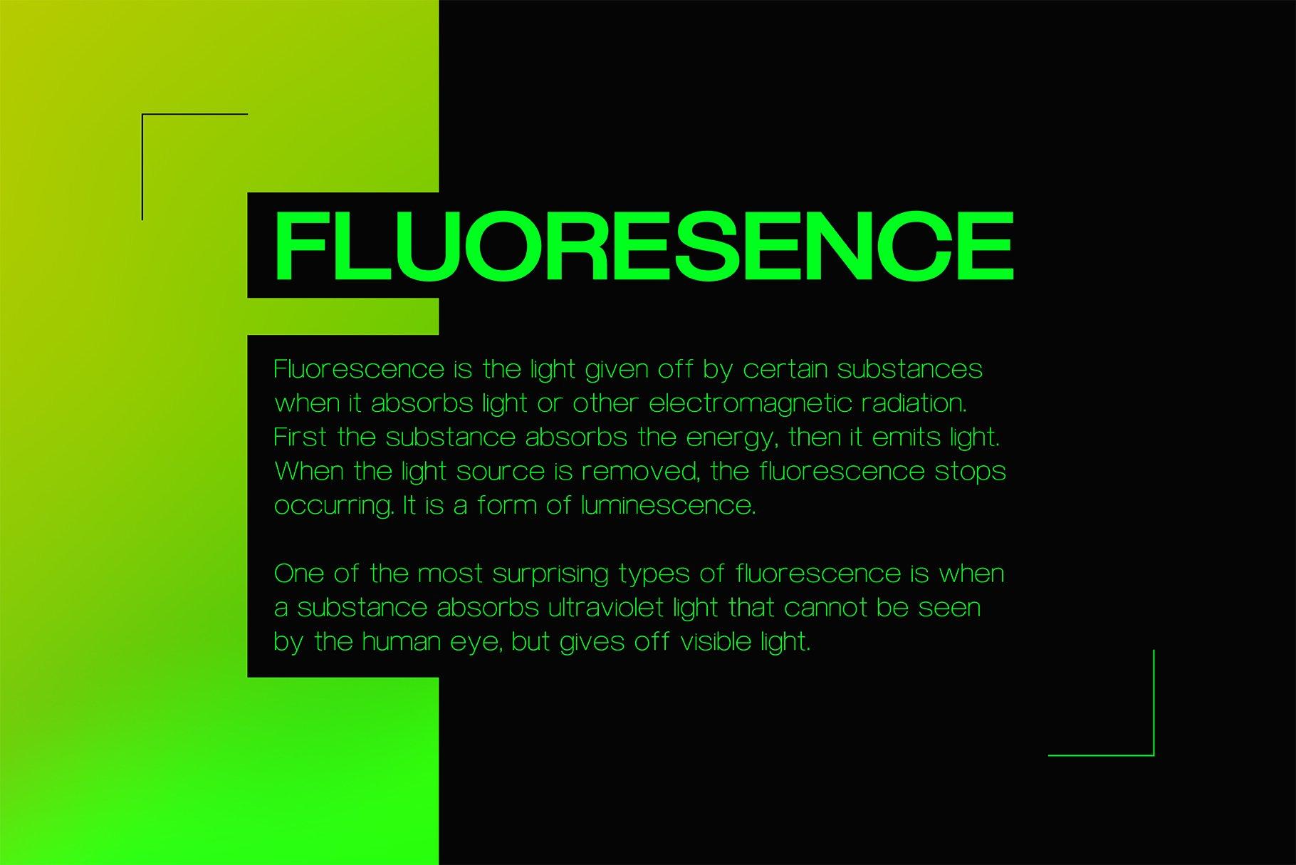 现代简约无衬线英文字体下载 FLURO Typeface插图(2)