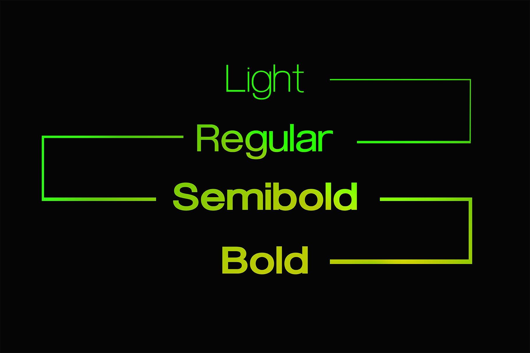 现代简约无衬线英文字体下载 FLURO Typeface插图(1)