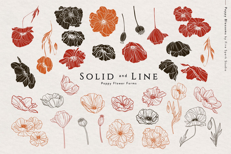精美优雅艺术装饰花卉图案插画PNG透明图片设计素材 Poppy Blossoms Vector Illustrations插图(1)