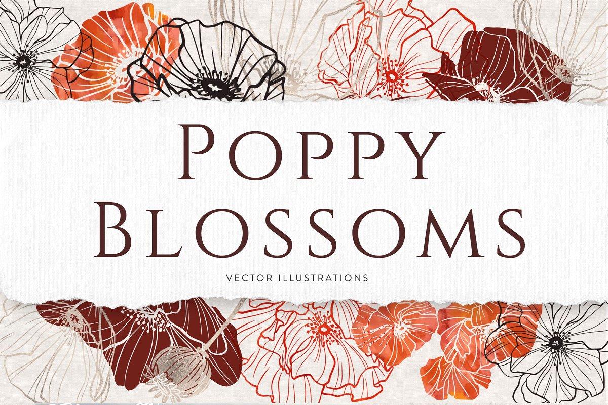 精美优雅艺术装饰花卉图案插画PNG透明图片设计素材 Poppy Blossoms Vector Illustrations插图