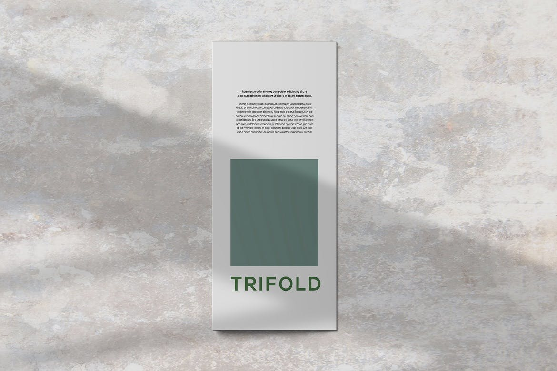 三折页小册子设计展示贴图样机PS素材 Trifold Brochure Mockup插图(3)