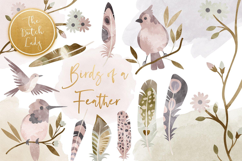 23款高清羽毛小鸟数字剪贴画PNG免抠图片素材 Birds & Feathers Clipart Set插图