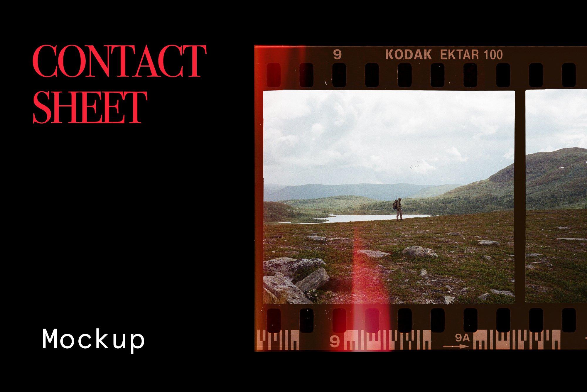 [淘宝购买] 潮流老式胶片胶卷边框图层叠加样机PS设计素材 Contact Sheet Film Roll Mockup插图