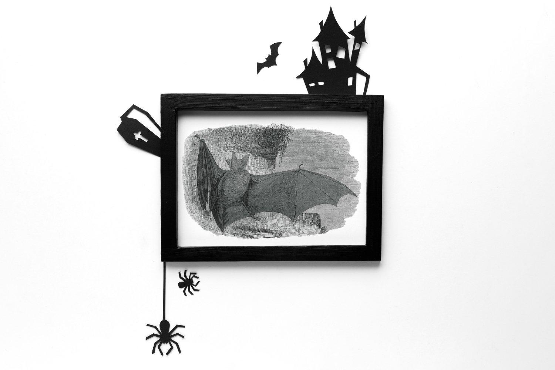10个高清蝙蝠背景PNG免抠图片素材 Vintage Bats Collection, Creepy Graphics插图(2)