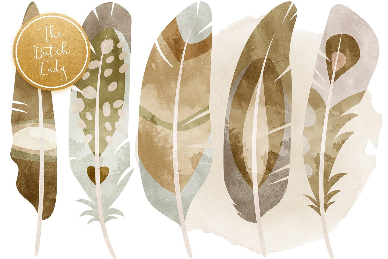 23款高清羽毛小鸟数字剪贴画PNG免抠图片素材 Birds & Feathers Clipart Set插图(2)
