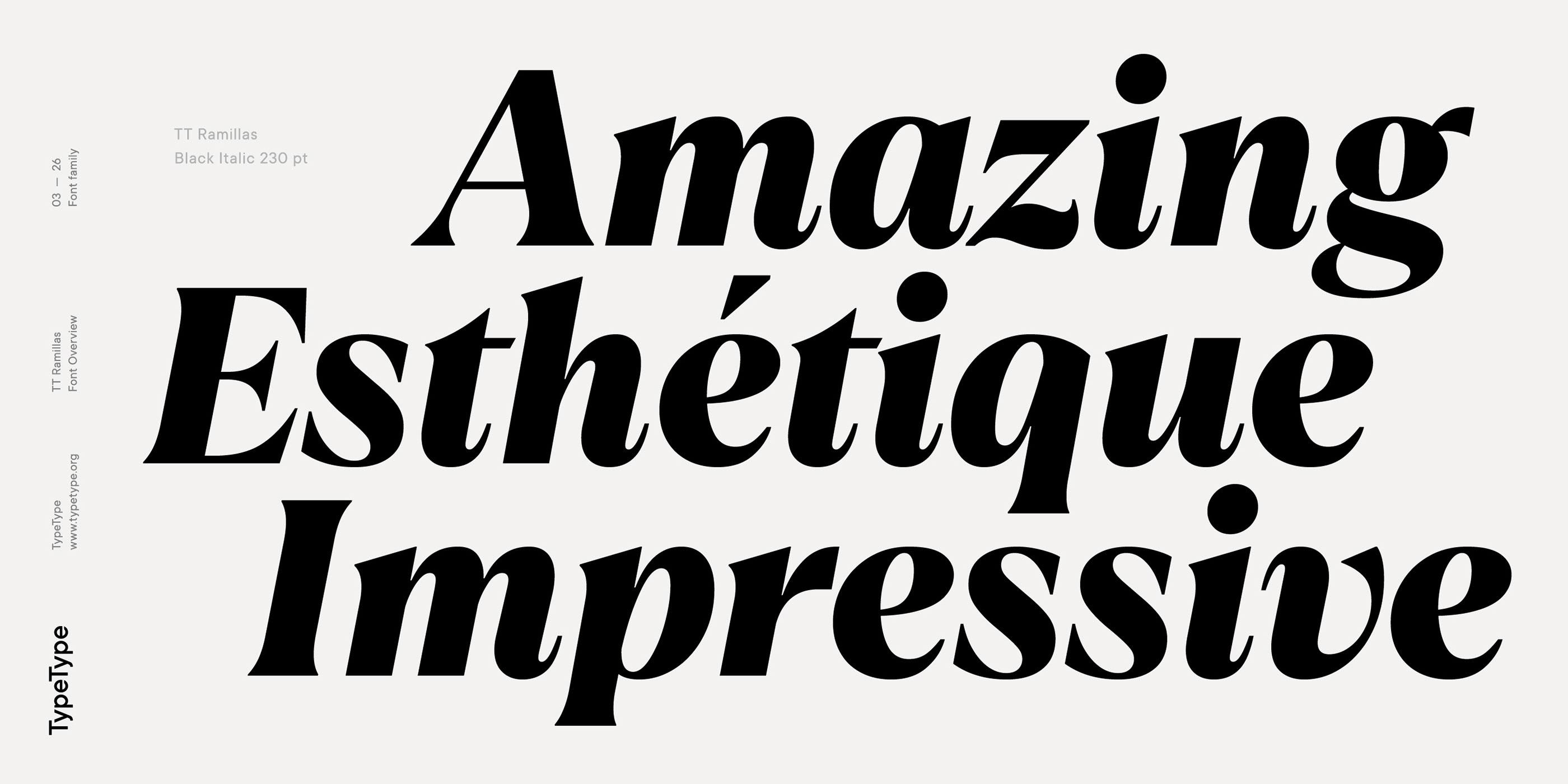 时尚海报标题文字设计衬线英文字体素材 Ramillas Typeface插图(2)