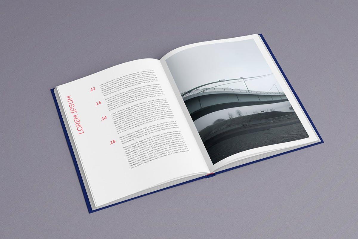 12款逼真封面烫金效果精装书画册设计展示智能贴图样机模板 Book Mockup插图(3)