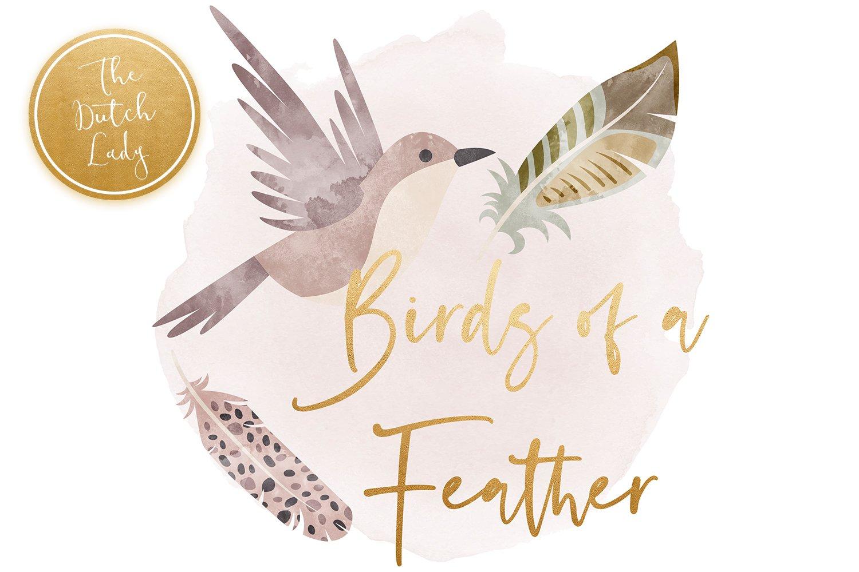 23款高清羽毛小鸟数字剪贴画PNG免抠图片素材 Birds & Feathers Clipart Set插图(4)