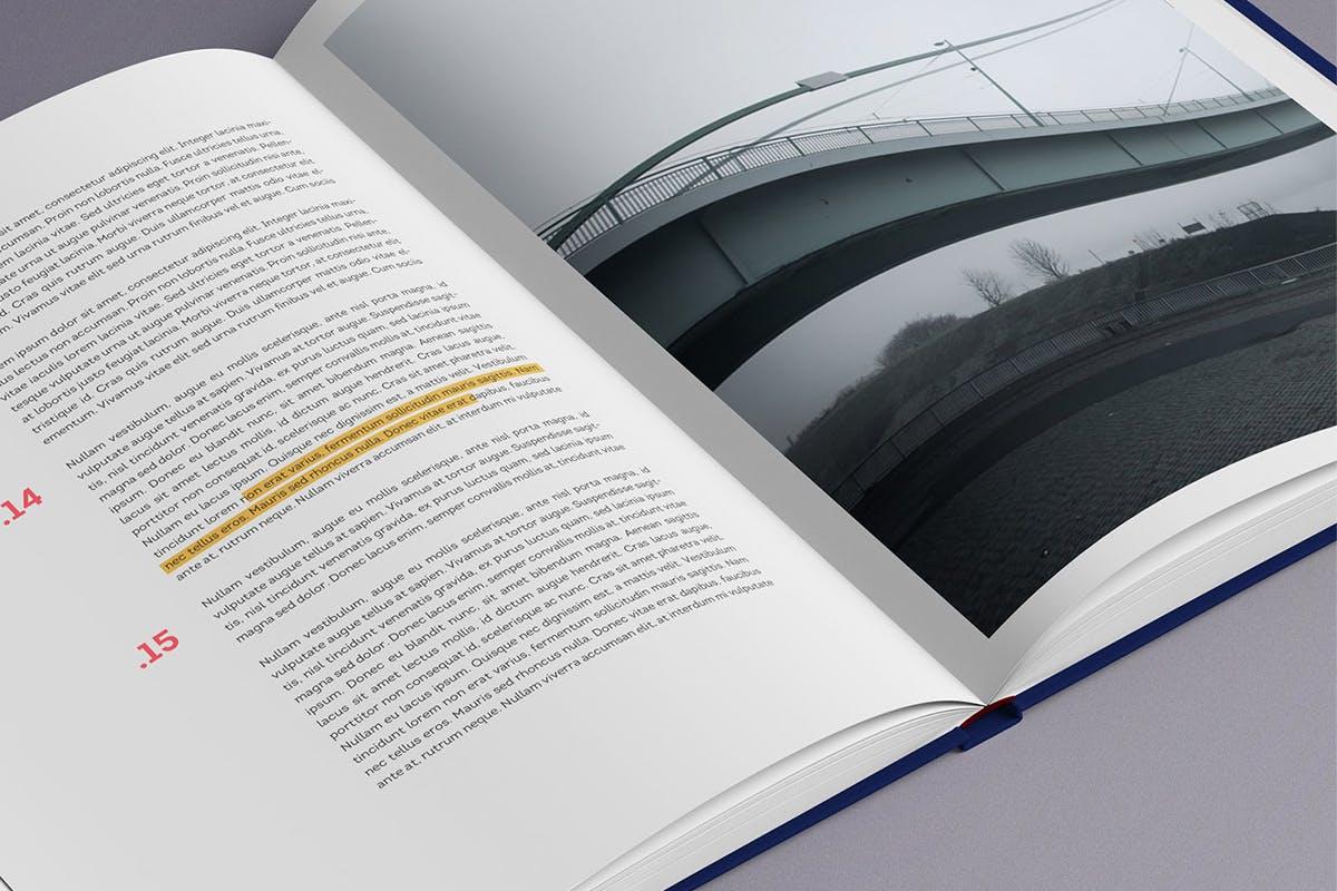 12款逼真封面烫金效果精装书画册设计展示智能贴图样机模板 Book Mockup插图(4)