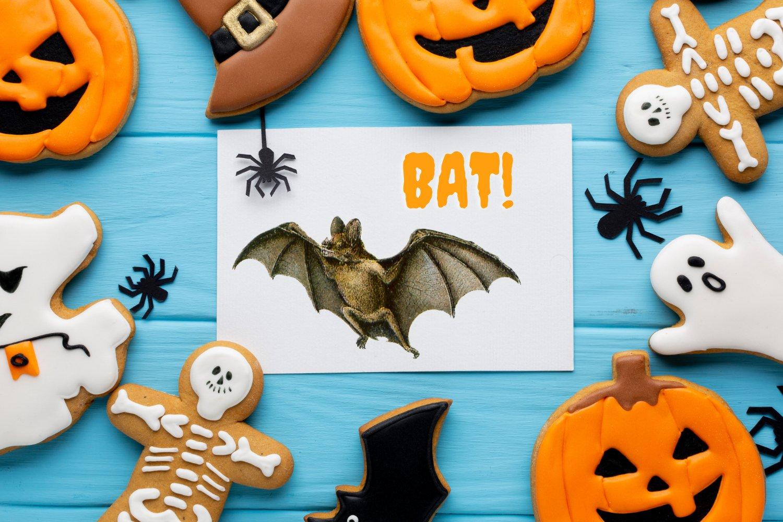 10个高清蝙蝠背景PNG免抠图片素材 Vintage Bats Collection, Creepy Graphics插图(5)