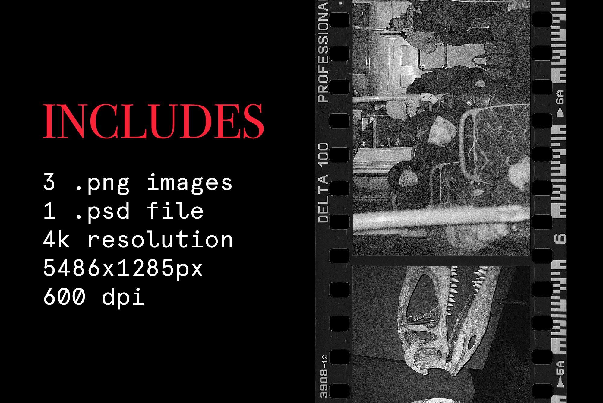 [淘宝购买] 潮流老式胶片胶卷边框图层叠加样机PS设计素材 Contact Sheet Film Roll Mockup插图(6)