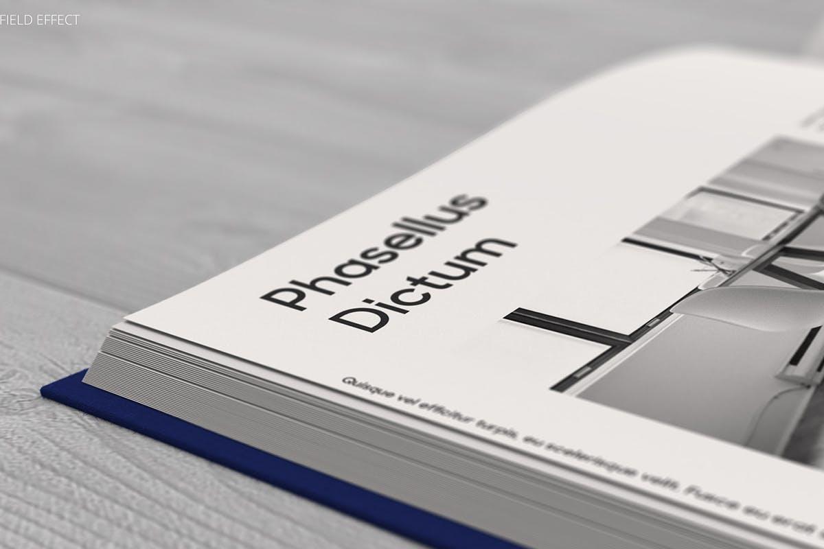 12款逼真封面烫金效果精装书画册设计展示智能贴图样机模板 Book Mockup插图(8)