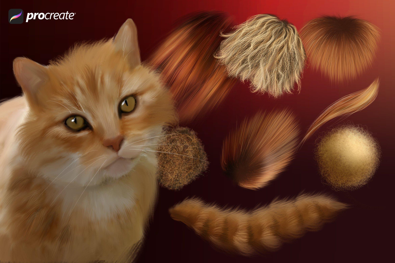 32款动物毛发效果Procreate笔刷 Animal Fur Procreate Brushes插图(2)