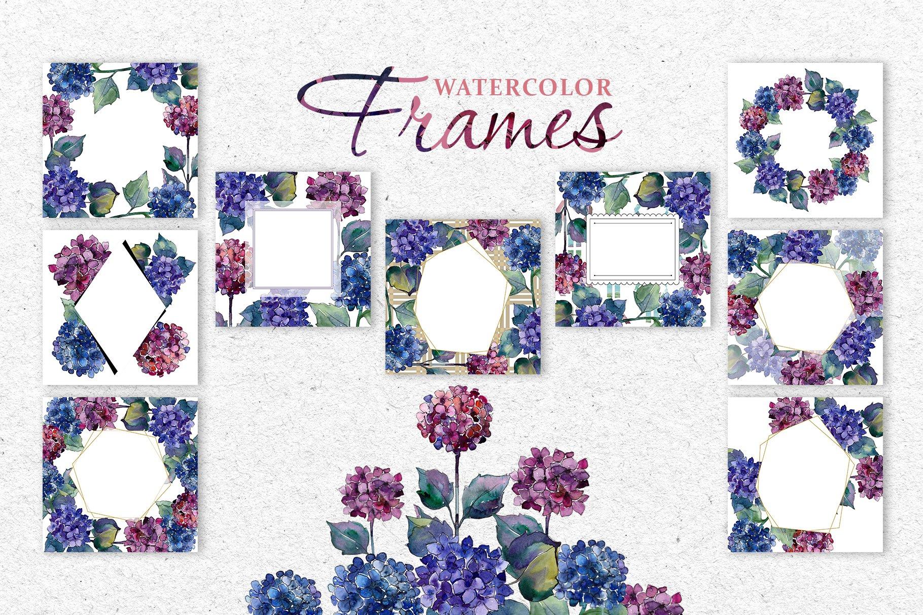 51个花卉植物水彩剪贴画插图图片素材 Gortenzia Magic Watercolor PNG插图(2)