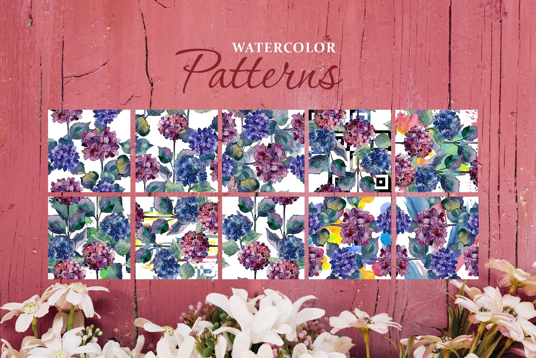 51个花卉植物水彩剪贴画插图图片素材 Gortenzia Magic Watercolor PNG插图(3)