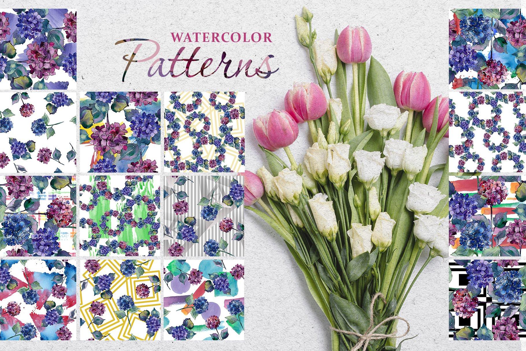 51个花卉植物水彩剪贴画插图图片素材 Gortenzia Magic Watercolor PNG插图(4)